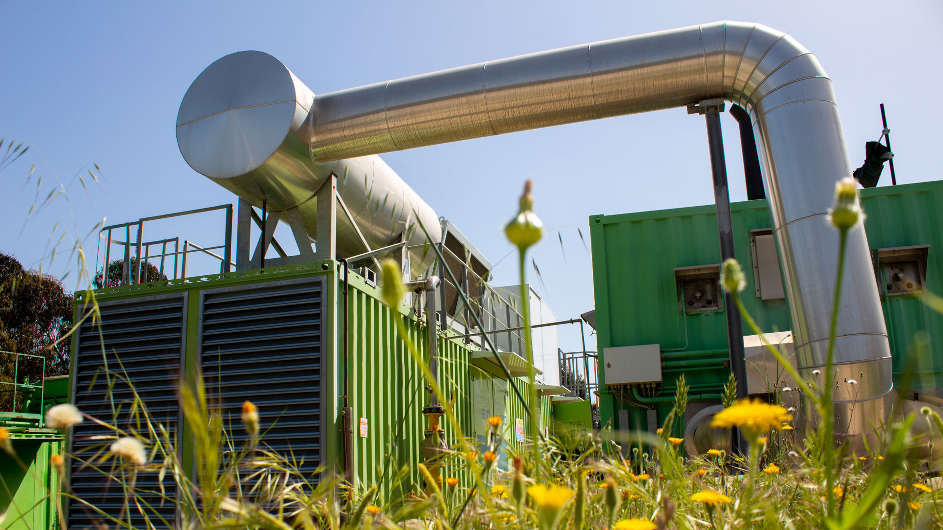 Biomasse, grande potenziale ancora inespresso