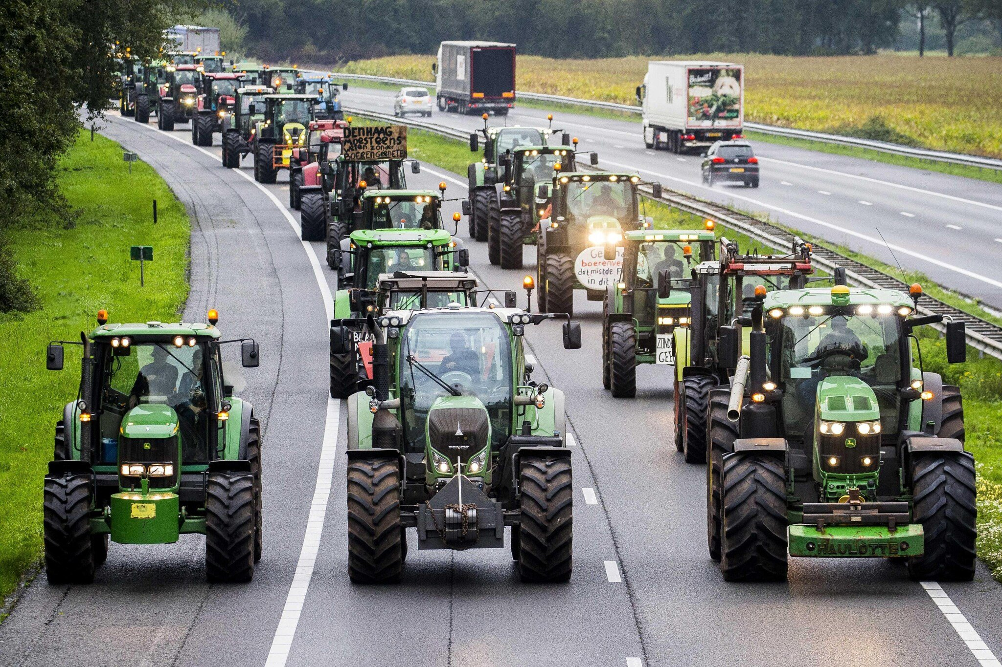La protesta degli allevatori olandesi