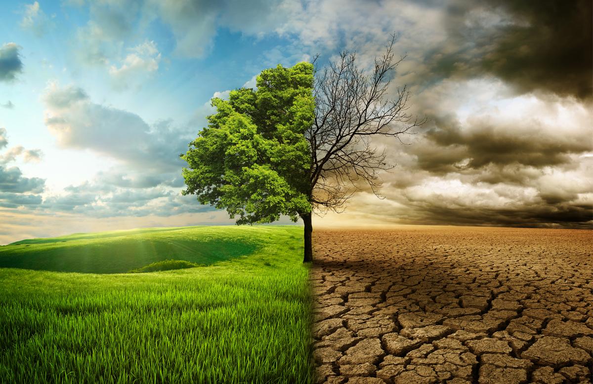 Clima impazzito? C'è chi dà la colpa all'agricoltura