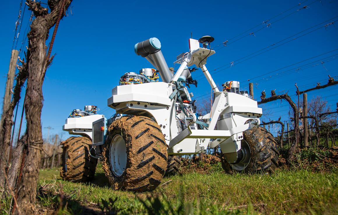 Yanmar e l'agro-bot del futuro