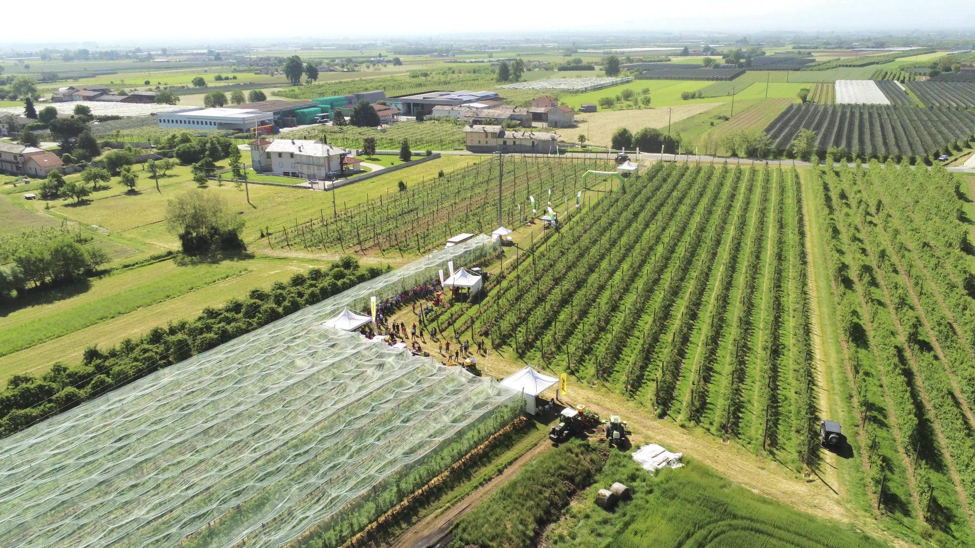 La Flex di Bella Macchine Agricole è stata utilizzata in frutteto