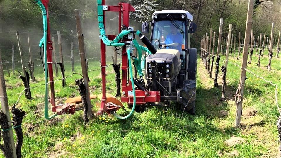Fischer è nata in una zona fortemente dedicata alla viticoltura sviluppando soluzioni specifiche