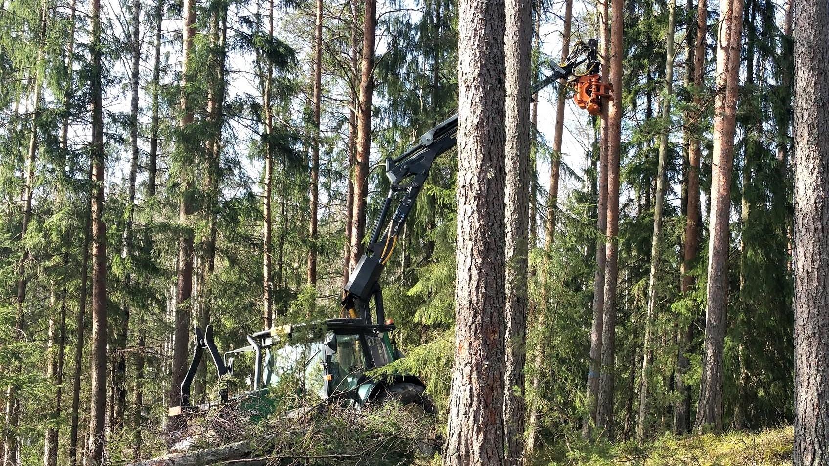 Axer è un costruttore di attrezzature forestali compatte